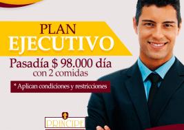 ejecutivo-hotelPpe